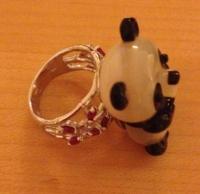 panda-ring-side